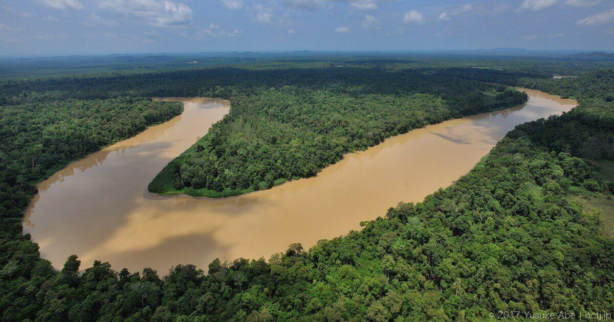 キナバタンガン川流域