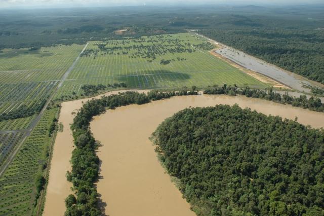 plantation_river